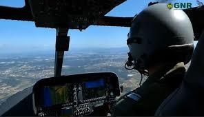 Nacional | Patrulha Aérea deteta corte ilegal de árvores em Espaço Florestal (com vídeo)
