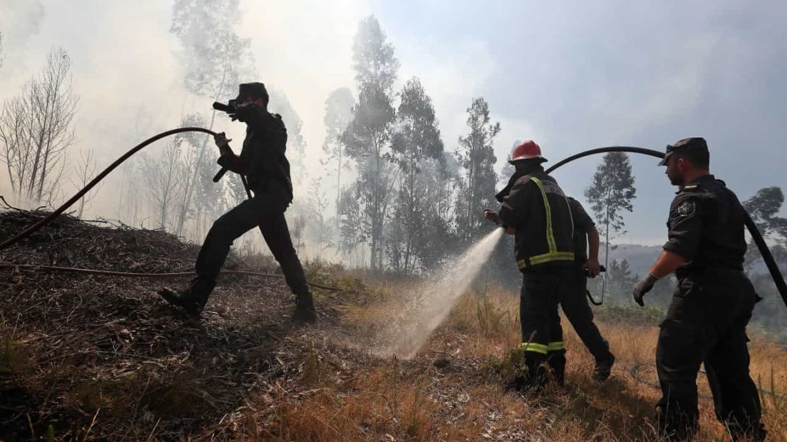 Aumenta para dez número de feridos no fogo da Sertã: nove bombeiros e um civil