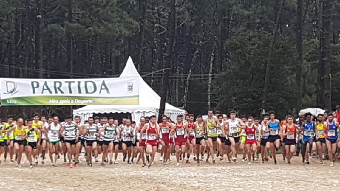 Atletismo: Mira apresenta candidatura para o Campeonato Europeu de Veteranos