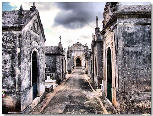 """Utilização dos Cemitérios Municipais – medidas preventivas e restritivas no âmbito do surto """"COVID-19"""""""