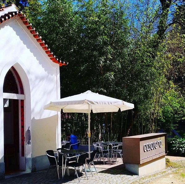 Casa de Chá da APPACDM de Coimbra reabre ao público a 18 de Maio