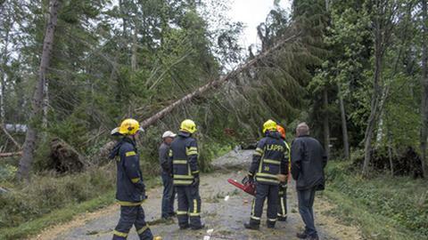 Tempestade deixa 80.000 casas sem eletricidade na Finlândia e dirige-se para a capital