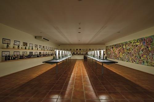 Museu do Vinho Bairrada comemora 17º aniversário