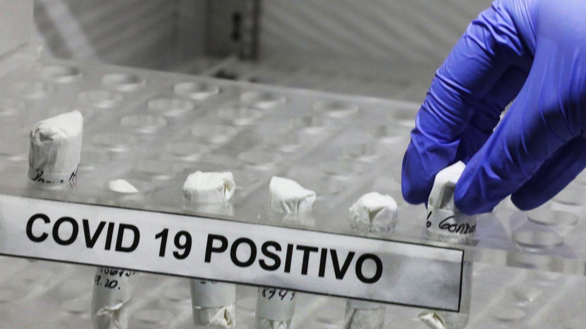 Mais fiável, barato e nada invasivo: Universidade de Aveiro otimiza teste PCR para detetar o novo coronavírus através da saliva