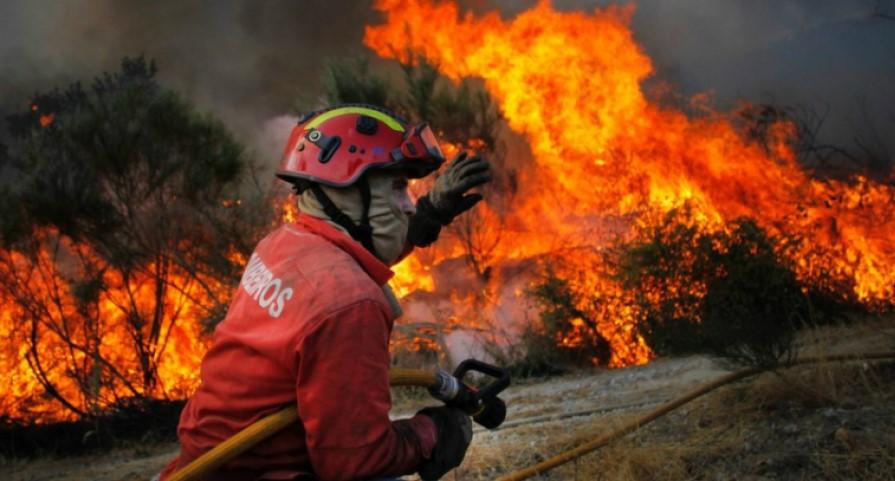 """Proteção civil alerta para """"perigo de incêndio rural"""""""