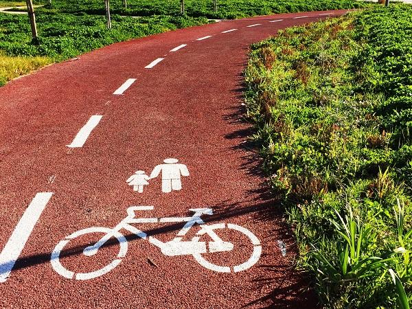 Coimbra quer estender mais 18 quilómetros de ciclovia pela margem direita do Mondego