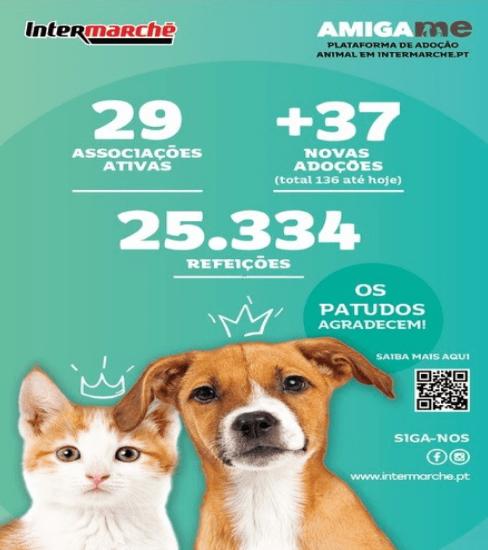 Campanha solidária do Intermarché doa mais de 25 mil refeições a animais abandonados