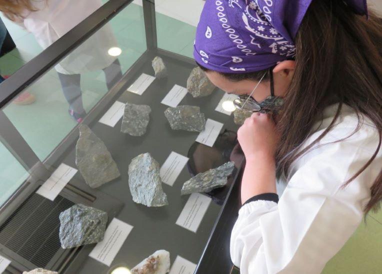 Proença-a-Nova | Dia da Terra assinalado com abertura de exposição no Centro Ciência Viva da Floresta