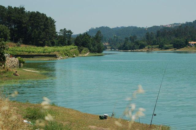 Os Verdes querem a monitorização e fiscalização da Bacia Hidrográfica do rio Dão e seus afluentes