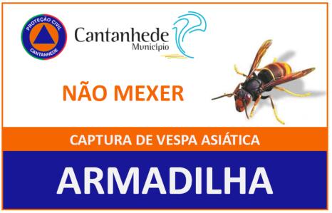 Município de Cantanhede disponibiliza armadilhas de captura de vespas velutina