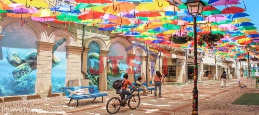 Câmara Municipal de Águeda lança novo site