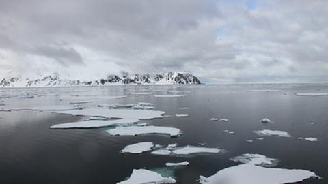 Equipa científica luso-canadiana vai estudar no Ártico impacto de mercúrio na vida humana