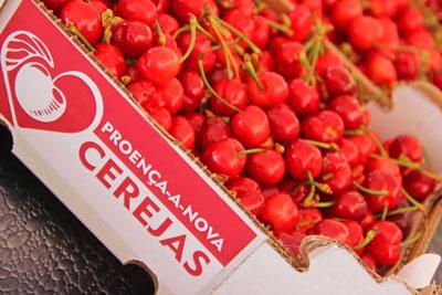 Proença-a-Nova | Quase uma tonelada de cerejas distribuídas durante o Festival