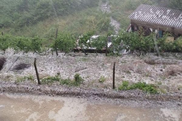 Chuva intensa e granizo causam inundações e quedas de árvores em Vila Real