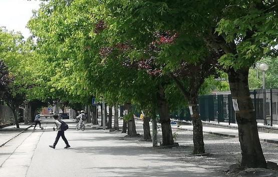 Rota Segura para a Escola fecha rua em frente à escola como medida experimental