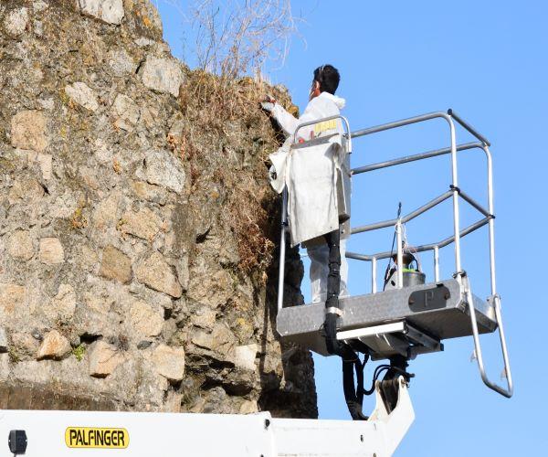 Évora | Câmara Municipal procede à Limpeza e Tratamento das Muralhas da Cidade