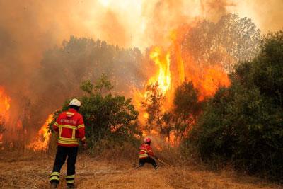 Mais de 230 operacionais combatem incêndio em Monchique em zona de mato