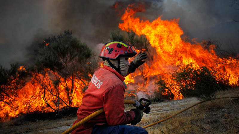 """Proteção Civil alerta para """"perigo de incêndio rural"""" até Sábado"""