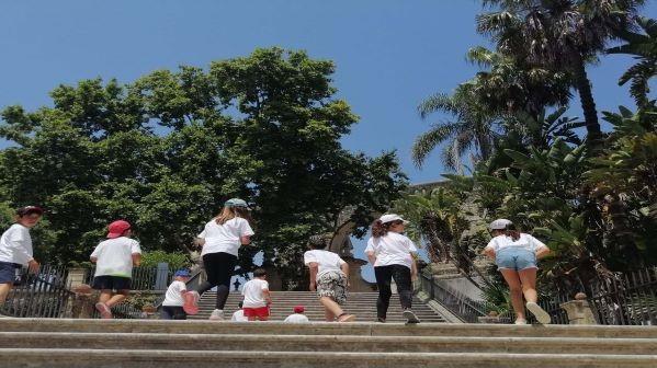 Ansião | Autarquia promoveu campo de férias