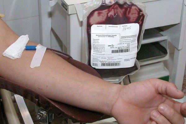 Instituto do Sangue arquiva processos por alegada discriminação na doação de sangue por homossexuais